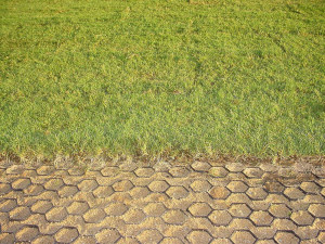 ez-roll-grass-pavers-dces-16